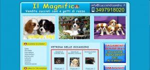 jc elettronica: software per l'automazione e per il web